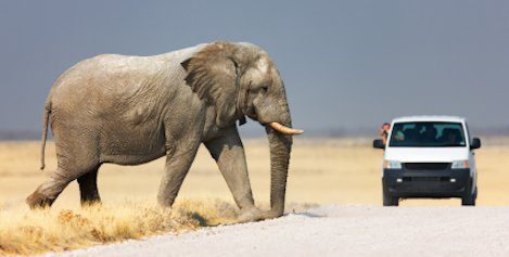 Rundreisen in Afrika