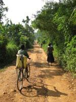 Mmanzeroad in Afrika