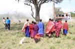 Tansania / Massai beobachten arbeiten
