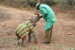 Kenia - Elefantenwaisen wird gefüttert