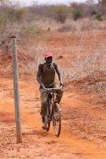 Kenia - Kontrolle am Zaun