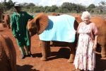 Kenia - Spenderin mit Elefant
