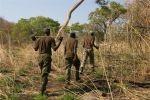 Malawi - Wilderer patroullieren