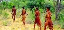 Namibier auf der Jagd
