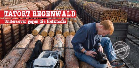 Tatort Regenwald